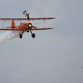 Breitling Wing Walkers by Tim Clifton - Transportation Airplanes