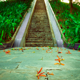 To the heaven by Syed Waseem - Landscapes Travel ( stairway, waterfall, travel, flower )