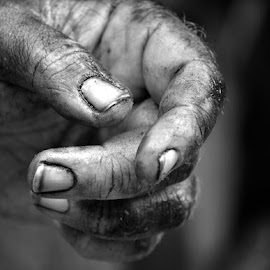 Working Hands by Crys Griffin - People Body Parts ( work, hands, people,  )