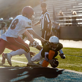 Stretching out for the score by Kevin Mummau - Sports & Fitness American and Canadian football ( football, backlight, touchdown, backlighting, stretching )