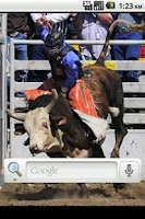 Screenshot of Bull Riding Live Wallpaper
