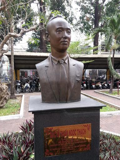 Bac Si Pham Ngoc Thach