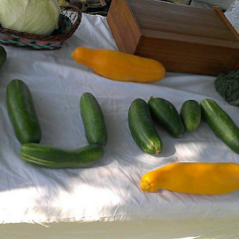 Vege's YUM by Ann Rainey - Food & Drink Fruits & Vegetables ( zucchini, vegetables, yum, squash,  )