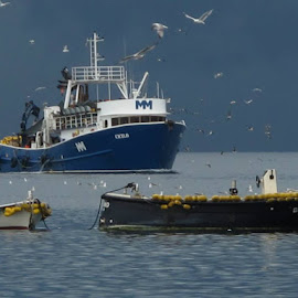 Arrival  by Darka .... - Transportation Boats
