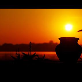 goledn sun by Praveen Premkumar - Landscapes Sunsets & Sunrises ( creative, sunrise, gold, sun,  )