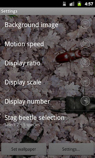 【免費個人化App】Stag beetle Live Wallpaper-APP點子