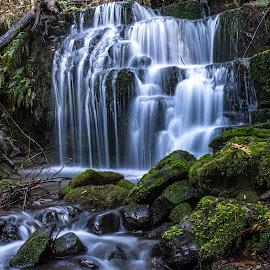 Featherstone Falls, Mt Wellington by Jon Deeprose - Landscapes Waterscapes ( tasmania, waterfall, hobart, mt wellington, featherstone falls )