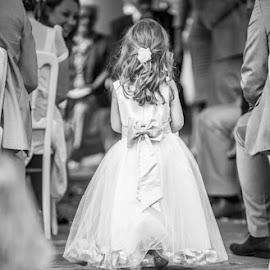 Ceremony by Daniel Charlton - Wedding Ceremony ( bridesmaids, aisle, wedding, cute, ceremonu )
