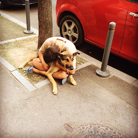 Say something I'm giving up on you by Cosmin Stahie - Instagram & Mobile Instagram ( hug, homeless, dog, boy )
