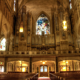 The Organ by Madhujith Venkatakrishna - Buildings & Architecture Places of Worship