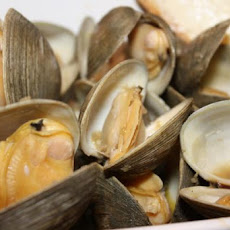 Steamed Clams or Mussels