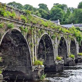 Ivy bridge by Diane Ljungquist - Buildings & Architecture Bridges & Suspended Structures