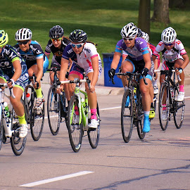 Racing by Jim Czech - Sports & Fitness Cycling ( bicycles, bike, riding, racing, pedals, bicycle racing, race, bicycle )