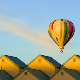 2014  LHC  Balloon Fest by Jo Gonzalez - Transportation Other ( hot air balloon, homes )