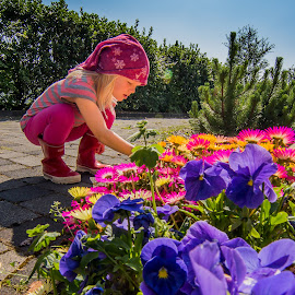 Enjoying summer by Arnar Sigurbjörnsson - Babies & Children Children Candids ( flowers of iceland, canon650d, pink girl, purple, nature of iceland, travel iceland, skiriduklaustur, travelling iceland, purple flower, pink flower, iceland, skriðuklaustur, na iceland, tokina 11-16, pink, tokina )