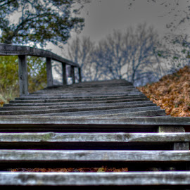 The only way is Up by Lasbi Naboj - City,  Street & Park  City Parks ( naantali, stairs, stairway, park, autumn, finland, up )