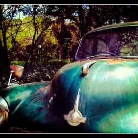 Resting by Mari du Preez - Transportation Automobiles ( broken, old car, vintage, green, automobile )