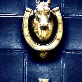 Horseshoe by Greg Brzezicki - Novices Only Objects & Still Life ( doorbell, blue, horse, door, golden )