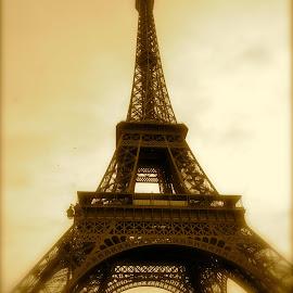 Eiffel Tower - Paris - 2012 by Laurence Sanouiller - Buildings & Architecture Architectural Detail