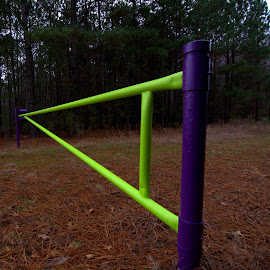 by Terry Hairston - Artistic Objects Other Objects ( timber management, virginia, gates, va )