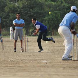 Straight to wicket by Sanam Ahmed Khan - Sports & Fitness Cricket ( gurgaon, battin, batting, blue, cricket, bowling, wicket,  )
