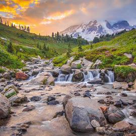 Paradise by Christian Flores-Muñoz - Landscapes Mountains & Hills ( clouds, mountains, national park, sunset, mount rainier )