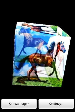 3D Steed