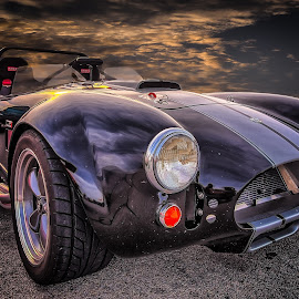 Cobra by Ron Meyers - Transportation Automobiles