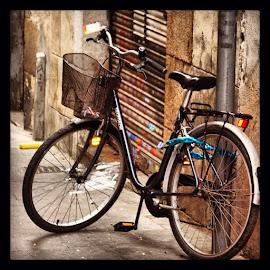 by Elana Mckivergan - Transportation Bicycles ( bicycles, popyacolour, postcardgram, mytravelgram, eclectic_photos, photowall, photooftheday, contestgram )