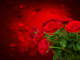 Screenshot of Red Rose