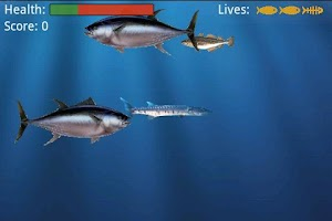 Screenshot of Food Chain Lite