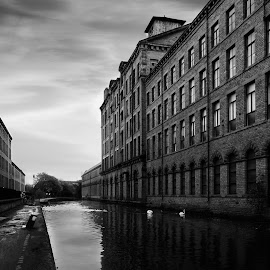Salts Mill by Darrell Evans - Buildings & Architecture Public & Historical ( mill, industrial, saltaire, salts mill, stone, industry, canal, #GARYFONGDRAMATICLIGHT, #WTFBOBDAVIS )
