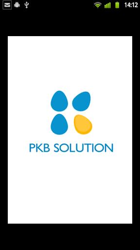 PKB SOLUTION