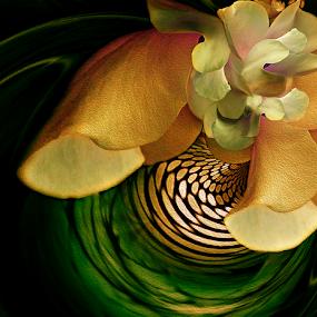 WAVE by Carmen Velcic - Digital Art Abstract ( abstract, green, roses, yellow, flowers, digital, oraange )
