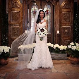 The  #beautiful #newlywed sabreena by Violator Fotography - Wedding Bride