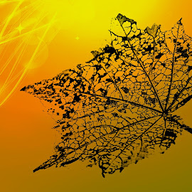 New Life by Mary Bray - Digital Art Things ( light rays, leaf, golden )
