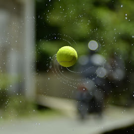 tennis by Sabdo Bintoro - Sports & Fitness Tennis