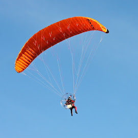 Paraglider by Dirk Luus - Transportation Other ( sky, paraglider, fly, outdoors, parachute )