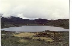 Laguna Trafipan