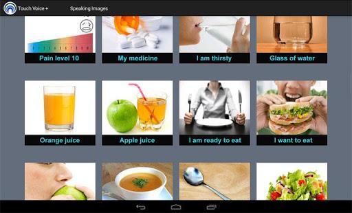 Touch Voice + - screenshot