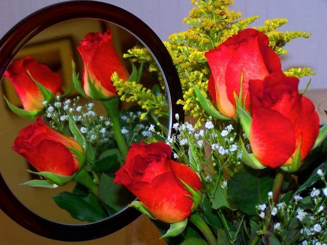 Te regalo una rosa ROSAS%2B3
