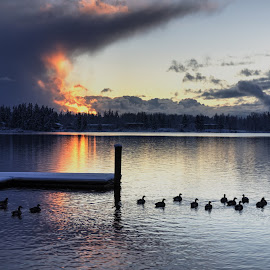 Lake Whatcom by Dennis McClintock - Landscapes Weather ( winter, lakes, weather, storms, landscapes )