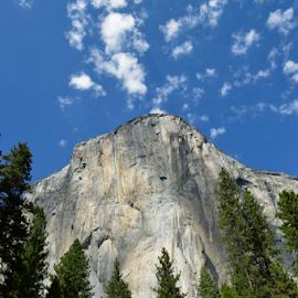 el capitan by Tim Hauser - Landscapes Mountains & Hills ( natonal parks, mountains, yosemite, el capitan, art, fine art )