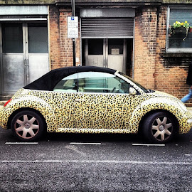 Beetle by Simone Salardi - City,  Street & Park  Street Scenes ( london, street )