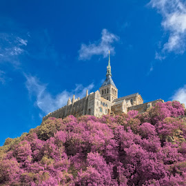 Mont Saint-Michel - Tickle Me Pink by Nicolas Raymond - Buildings & Architecture Public & Historical ( old, europe, colorful, rower, architecture, vibrant, historic, colour, fantasy, colourful, sky, ancient, foliage, cloudy, pink, france, surreal, mont saint-michel, normandy, classic, clouds, hill, building, hdr, colors, cliff, white, ethereal, colours, history, landmark, saint-michel, color, blue, mont, citadel, commune, towering, castle, brown, town, historical, medieval,  )