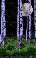 Screenshot of Birch Wood Live Wallpaper