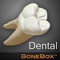 Free Download BoneBox™ - Dental Lite APK for Samsung