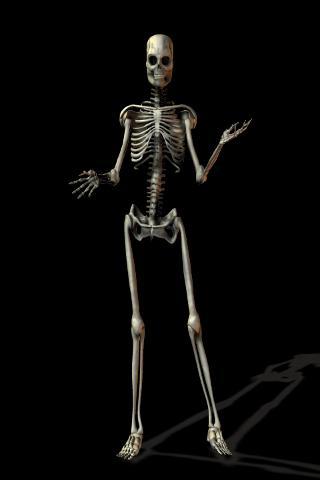 skeleton james