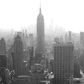NYCeverything by Tyler Pepin - Buildings & Architecture Office Buildings & Hotels ( b&w, nyc, the mood factory, mood, lighting, sassy, pink, colored, colorful, scenic, artificial, lights, scents, senses, hot pink, confident, fun, mood factory ,  )