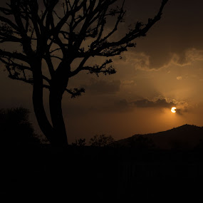 Into the dark by Ashish Garg - Landscapes Sunsets & Sunrises ( silhouette,  )